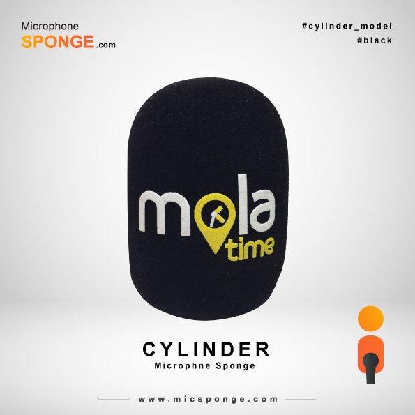 Cylinder Black Microphone Sponge